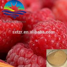 Plant Extract--Raspberry Extract with Raspberry ketone