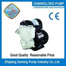 300W Automatic self-priming Electric Hot And Cold Water Pump, Made In China