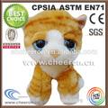 Grandes ojos de gato de peluche juguetes de los animales, mini gato de peluche y muñecos