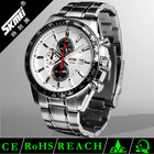 hot selling blank dial stainless steel watch