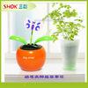 Newest Solar Toy Product mini solar flower,solar plastic flower