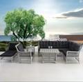 Cana conjunto de sofá de móveis para sala dw-sf019