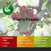 Concentrate Bulk Fruit Juice Cherry Powder Cherry Juice
