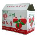 hight qualidade de suco de frutas caixas de embalagem