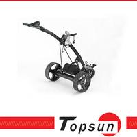 3 Wheels Golf buggy Shark shape 12V tubular motor