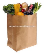 Plain no logo brown/white kraft grocery paper bag