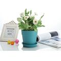 barato jardim vasos decorativos de plástico para mudas de plantas