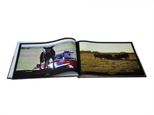 Printed Hardcover Book/POP UP Book