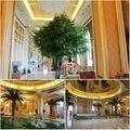 اللبخ الاصطناعي شجرة دائمة الخضرة كبيرة/ أشجار بانيان للنادي والديكور الفندق