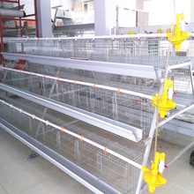 Good design best selling poultry shed chicken wire animal cage