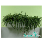 2014 new product vertical flower wall for gift,vertical garden containers,flowerpot with hanger
