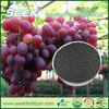 SEEK New Product- Bamboo biochar organic fertilizer recipe
