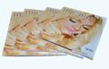 Praça brilhante acordeão dobre brochura impressão/slogans flyer impressão do folheto