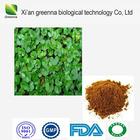 Centella Asiatica Extract Powder