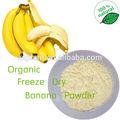 Gmp Natural de plátano en polvo / de plátano en polvo / liofilizado de plátano en polvo