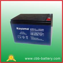 Seal Maintenance Free storage Electric Bike Battery 6-DZM-14(12V14AH)