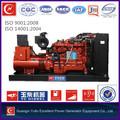 biogás del generador de la turbina