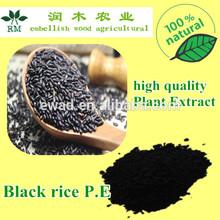 black rice benefits :antioxidant