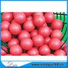 Stocks Custom Colors Small Golf Ball Stress Ball