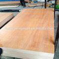 /wbp fenólicos/de melamina, completo panel de madera dura para el uso de muebles