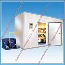 Commerical Walk In Freezer For Supermarket/Deep Freezer/Cold Storage