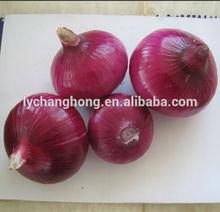 2014 new crop high quality 5-8cm fresh red onion