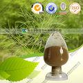 Padrão de ervas extrato de semente de erva-doce com melhor serviço