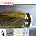 conservas de feijão verde enlatado produtoshortícolas enlatados