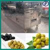 QHJ-150 automatic cherry/ olive/dates fruit pitting machine