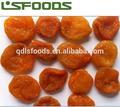 nuevo 2104 albaricoque seco de la fruta