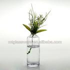 Solid Rectangle clear glass flower vases, bottles, wholesale