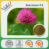 Factory making Botanical extract red clover extract,pure natural 40% isoflavone red clover p.e