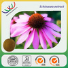 free sample HACCP KOSHER GMP manufacturer large supplement pure natural plant extract echinacea polyphenol chicoric acid