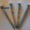 high quality galvanized masonry concrete nails