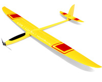 Fast 2m plane model powered hang glider