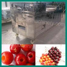 QHJ-150 automatic dates/peach/cherry pitter