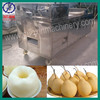 QHJ-150 automatic cherry/plum/peach fruit pitter machine
