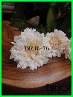 preserved natural soft pincushion chrysanthemum flowers