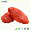 Improve kidney function Goji Berry Lycium barbarum