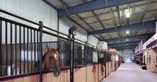 steel structure horse stable with ISO certification