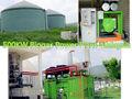 مزرعة دواجن 500kw مصنع الغاز الحيوي إدارة النفايات في ماليزيا