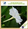 Top pure Jasmine Flower Extract,organic fertilizer