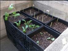 dikdörtgen plastik bahçe sebze potu paylaşırlar büyük ekici kutusu