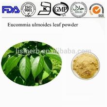 nourishing liver and kiney products Eucommia Ulmoides Oliv powder