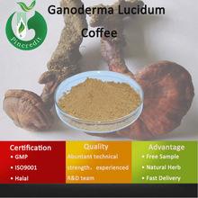 Ganoderma Lucidum Tea/Ganoderma Lucidum Side Effects/Ganoderma Lucidum Coffee