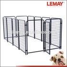 5x10x4ft fashion hot-sale black welded wire dog kennel run