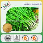 free sample for test HACCP KOF-K certified hunan changsha supplier natural powder allicin extract garlic