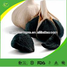 Aged Fermented Black Garlic (Allium sativum) (Bulb)