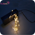 Twinkling or Steady, Multi-function Micro LED fairy string light