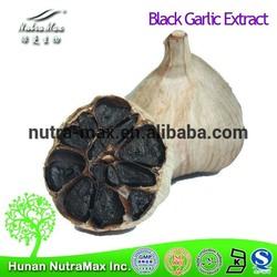 Hot Sale Black Garlic P.E. Polyphenols 3%--Nutramax Supplier